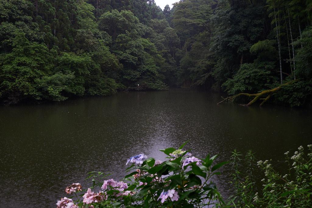 Shin-ike@Fushimi Inari Taisha 伏見稲荷大社の新池