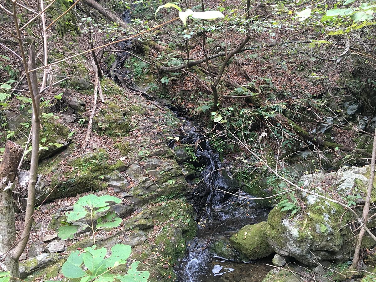 また小さい滝