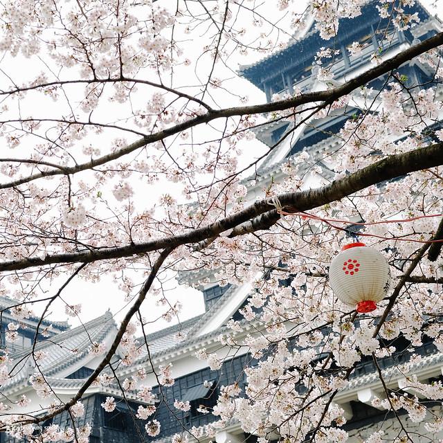北九州之春 | 07