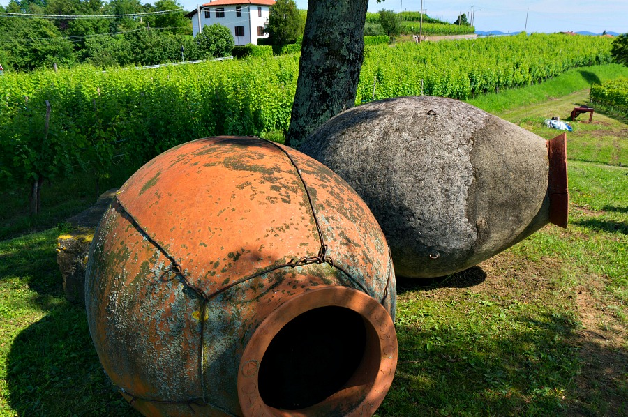 Terra-Cotta Ampulae no Longer in Use on the Gravner Farm