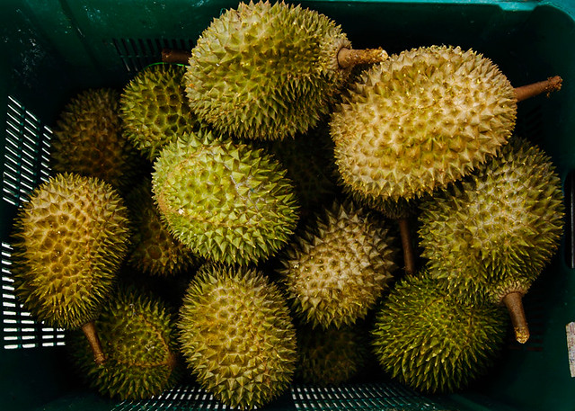 Musang King Durians