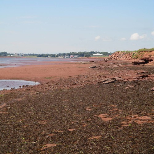 Looking west at Victoria, low tide #pei #victoria #victoriabythesea #beach #red #lowtide #northumberlandstrait #latergram