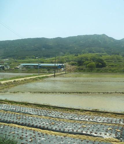 c16-Jeonju-Jinju-route (14)