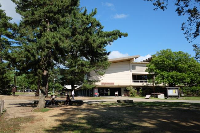 nara park museum1