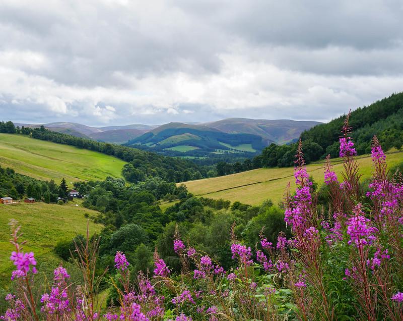 Scotland-126.jpg