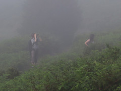 Estaba despejando la niebla