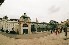Schmetterlinghaus. Vienna. Austria