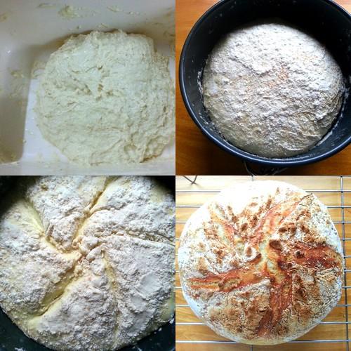 IMG_20160812_025706 No knead bread