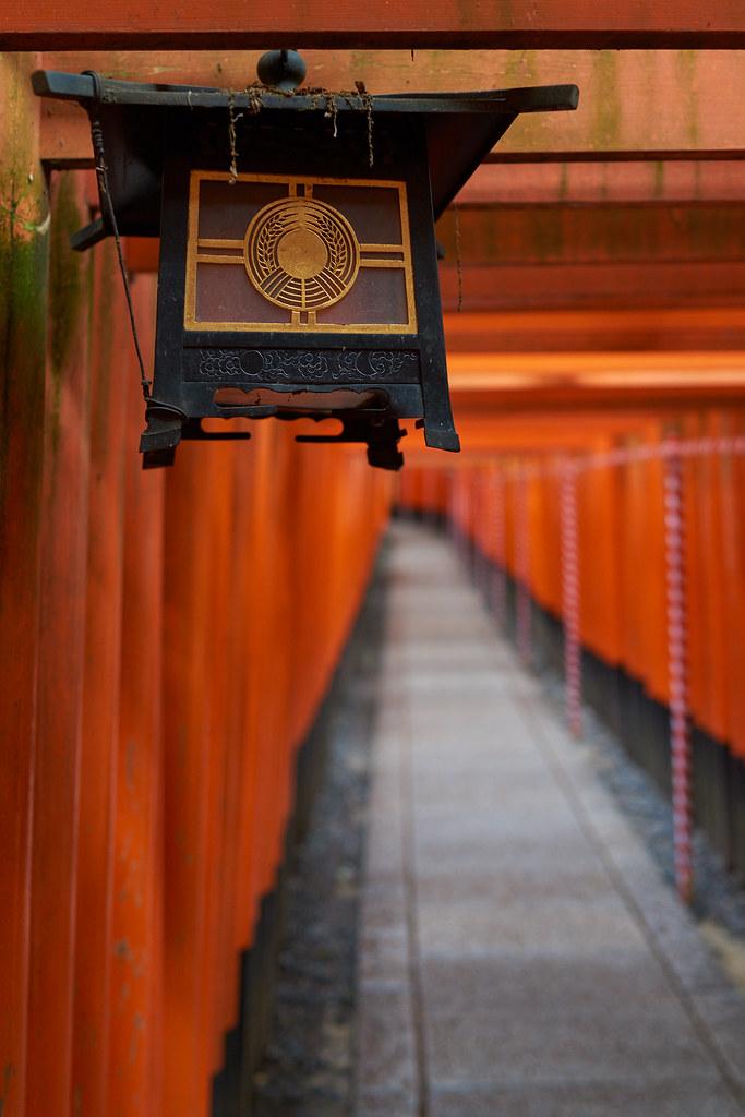 Senbontorii@Fushimi Inari Taisha 伏見稲荷大社の千本鳥居