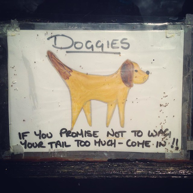 On the door to a Pottery shop in Strontian, Scottish Highlands.  #funnysigns #dogs