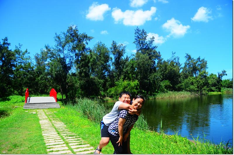 竹南海口人工濕地 (3)