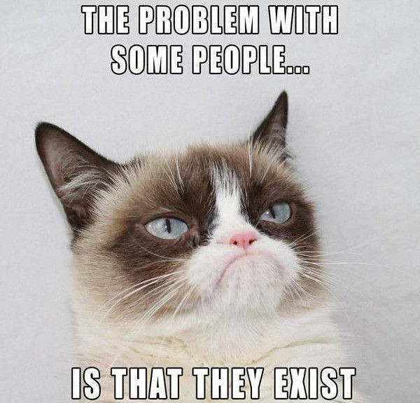 Grumpy Cat dislikes your existence