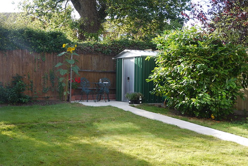 Pathway to the Garden Shed
