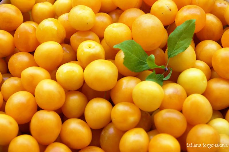 Желтая алыча