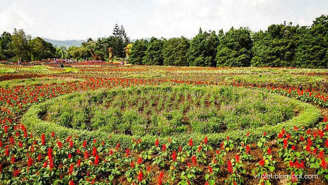 Garden2-145959rw