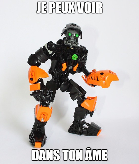 [Fans-Arts] Les Memes Bionifigs - Page 14 27963848050_a5703a0de1_z