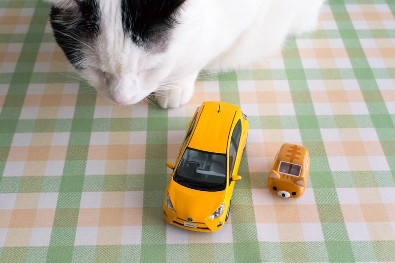 ドリームトミカSP リラックマ のんびりネコ、愛車を三台並べたところ