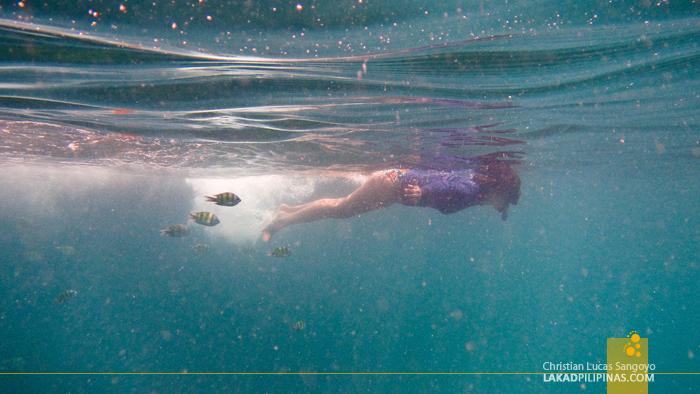 Krabi Four-Island Hopping Tour Snorkeling