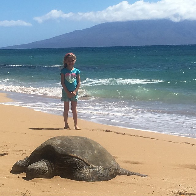 Yes, that turtle is bigger than her!