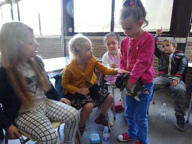 Werelddierendag in het eerste leerjaar