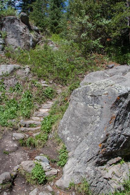 Moose Falls Trail