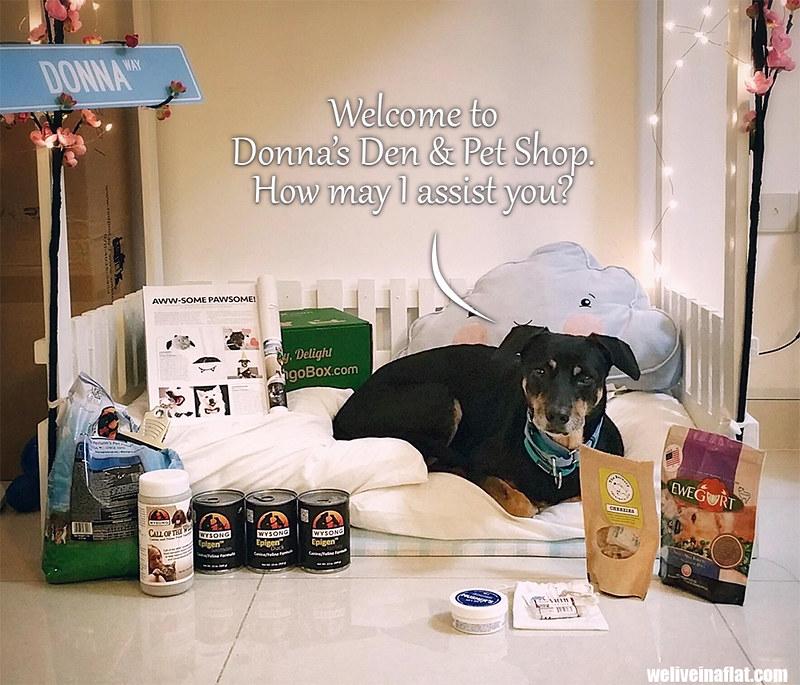 Donna's Singapore pet shop