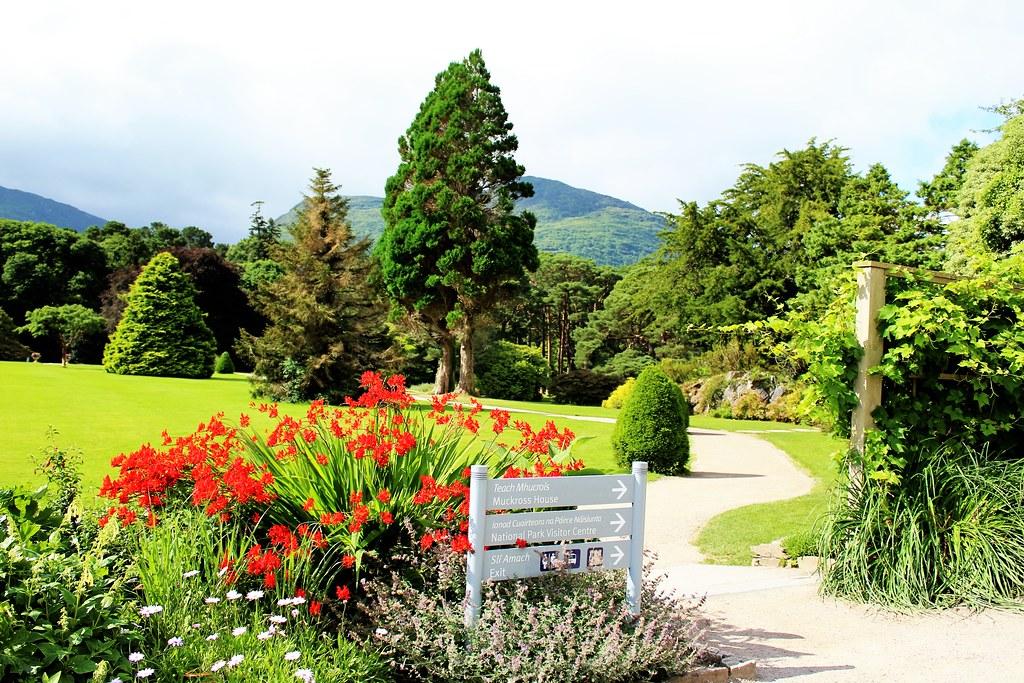 Muckross House Garden, Kerry, Ireland.