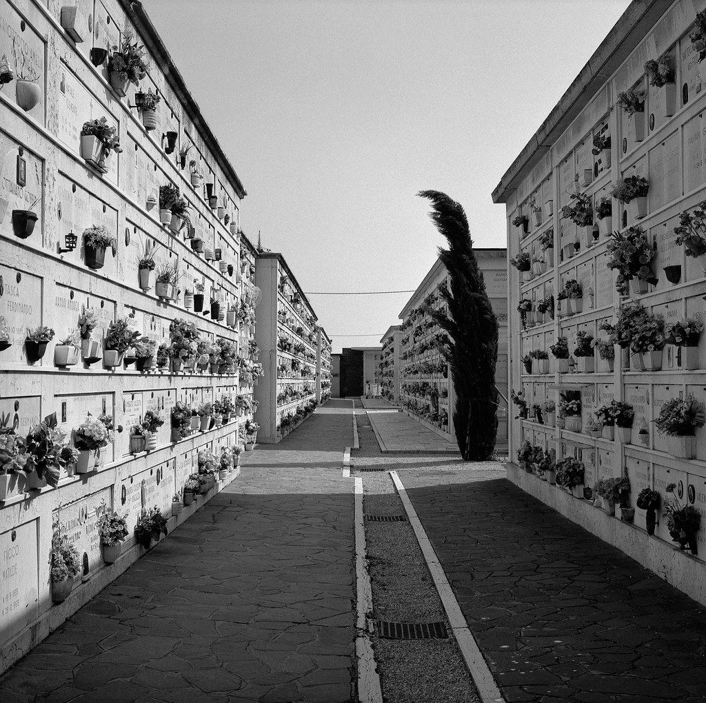 Cemetery, Italy | by austin granger