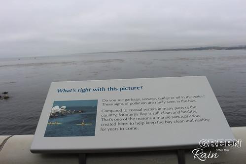 160703f Monterey Bay Aquarium _013