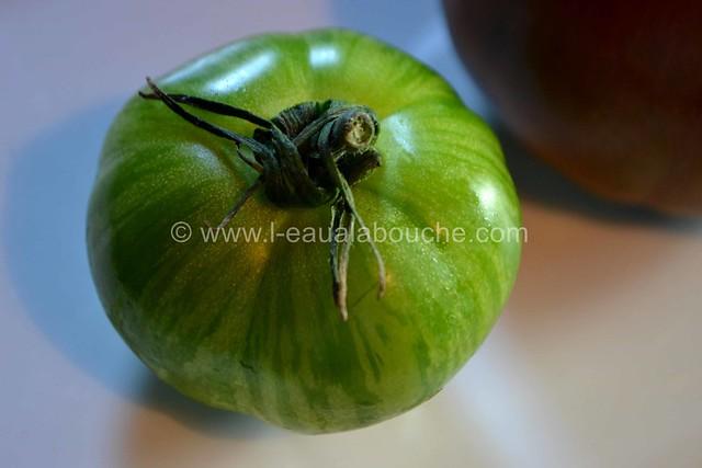 Tomates Multicolores aux Oignons Nouveaux & Graines © Ana Luthi Tous droits réservés 05