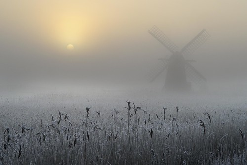Copyright Andrew Bailey - Freezing Fog and Hoar Frost