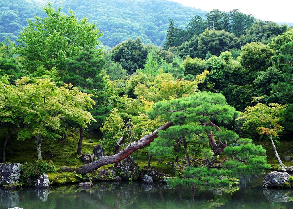 kioto4