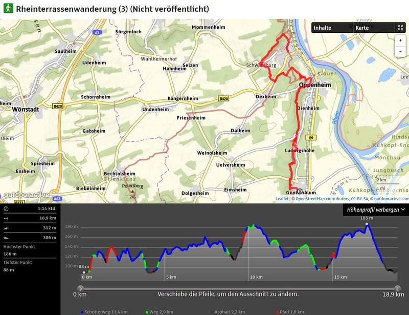 Rheinterrassenwanderung (3)