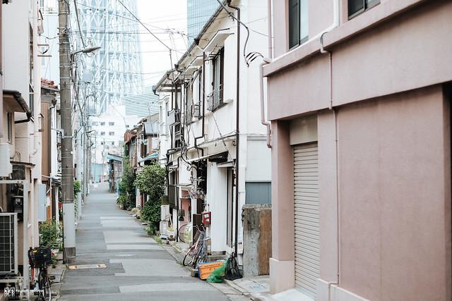 初夏,東京遊拍 | 34