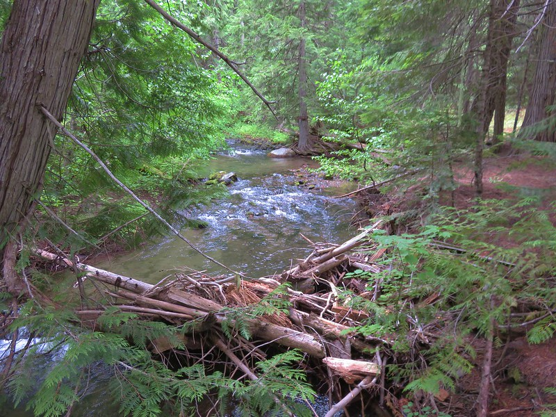 Fifteenmile Creek