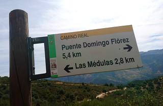 Indicador Camino Real