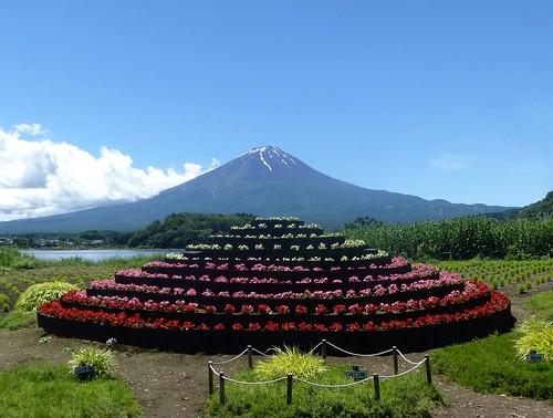 jp16-Fuji-Kawaguchiko-Nord-Shizen Seikatsu-kan (11)