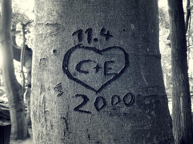 C + E <3 11.4.2000