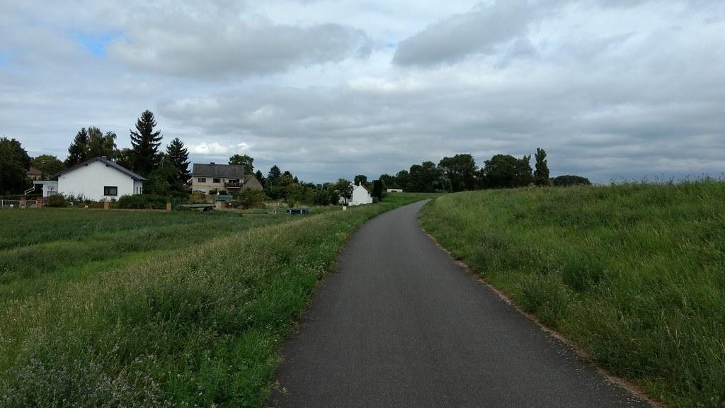 Ibersheim am Rheindamm