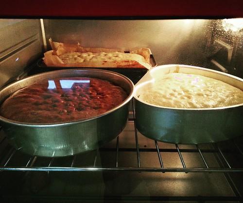 IMG_20160706_215000 3-in-1 baking of chocolate chip banana cake, chocolate walnut cake and blueberry lemon cake