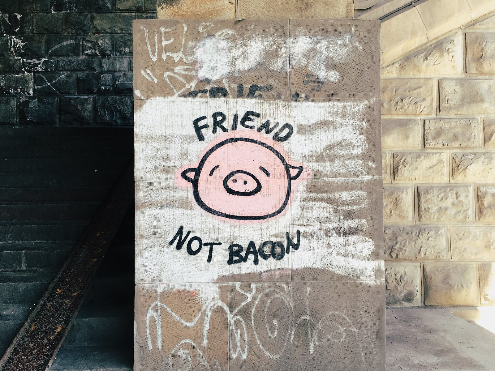 FRIEND, NOT BACON