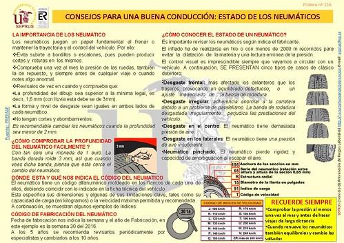 116 CONSEJOS PARA UNA BUENA CONDUCCIÓN-ESTADO DE LOS NEUMATICOS