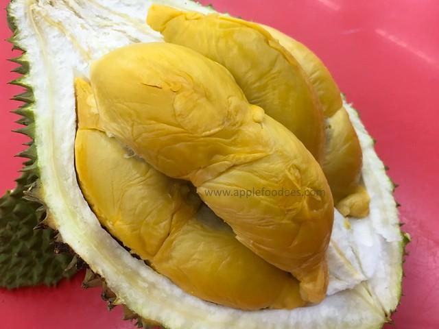 sinacco-D13-durian