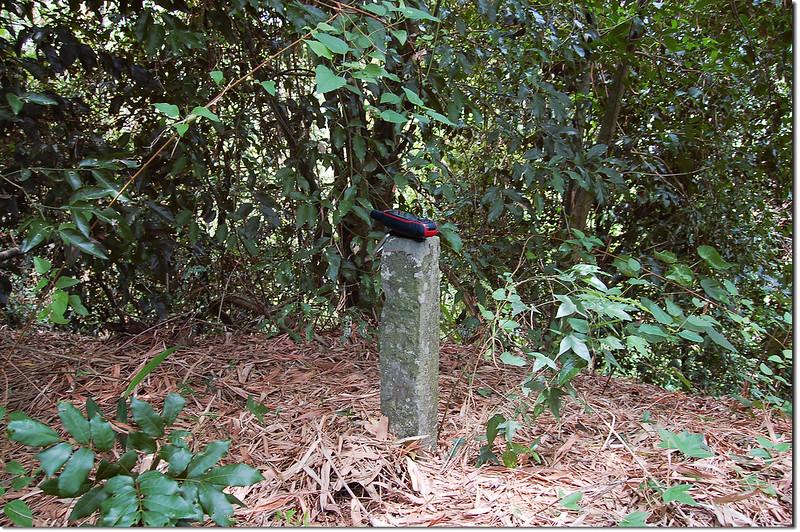 竹子鳥山水泥柱