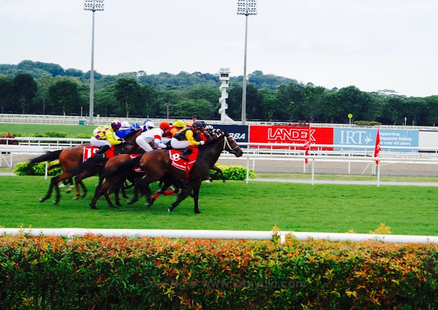 Emirates Singapore Derby 2016SAM_9762 21redfashion_yuki ng