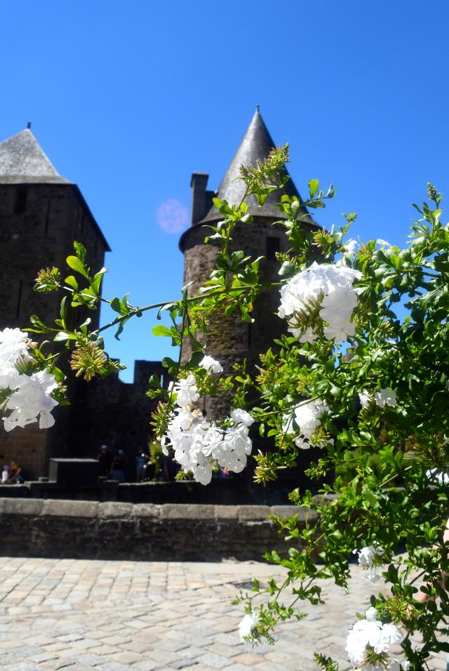 Fougeres Castle, Brittany | www.rachelphipps.com @rachelphipps