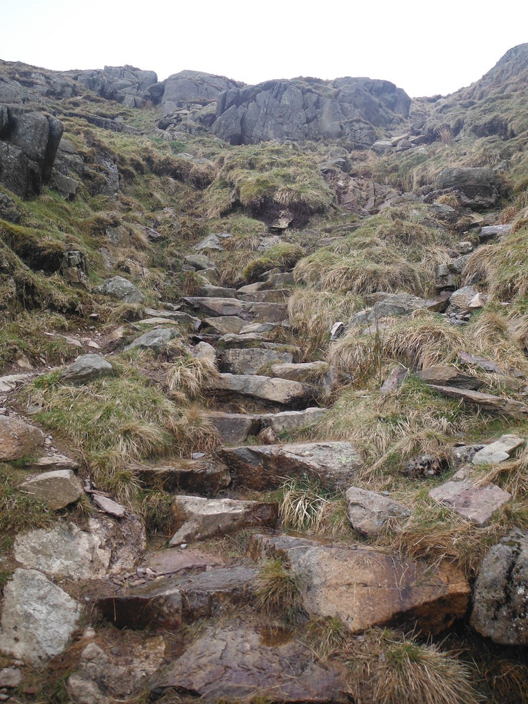 Climbing Redscrees 2