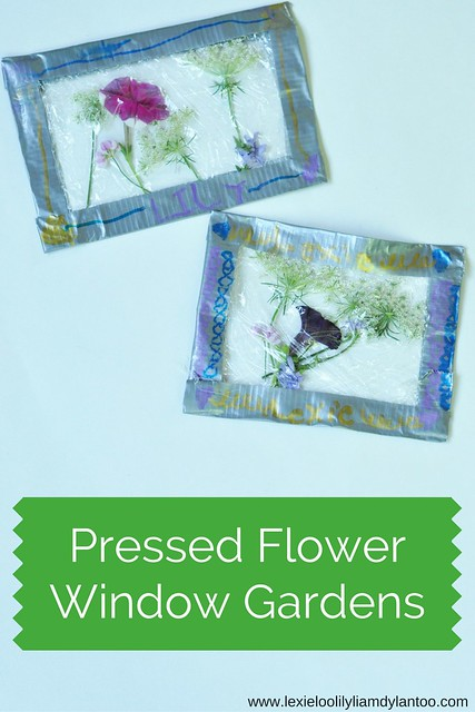 Pressed Flower Window Gardens