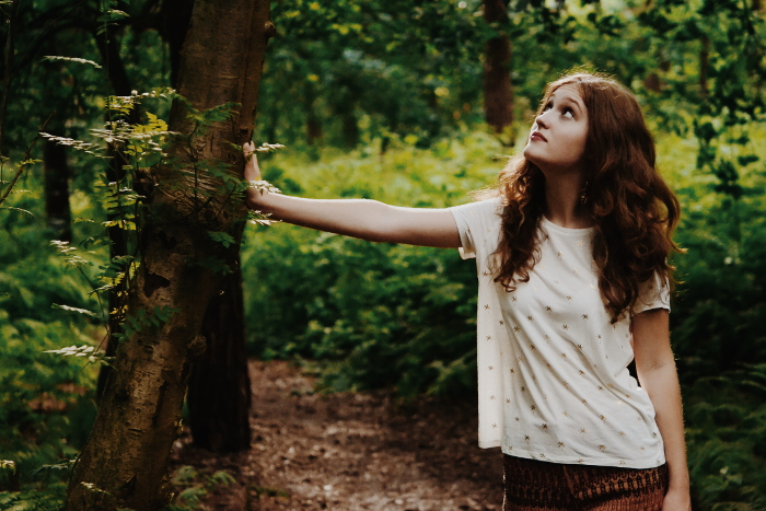Wald (2)