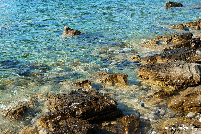 Вода у берега
